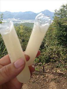 冷凍ジュース棒